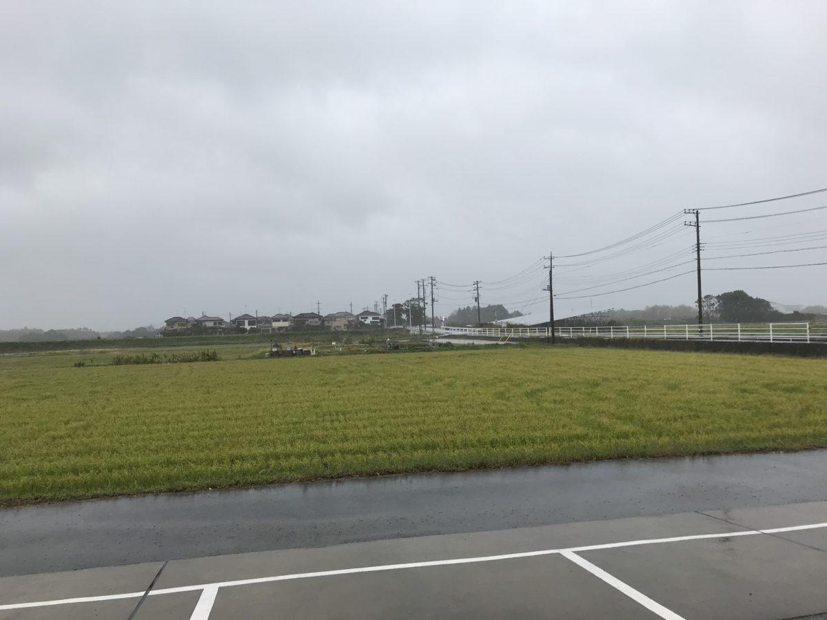 今年の秋は雨ばかり!